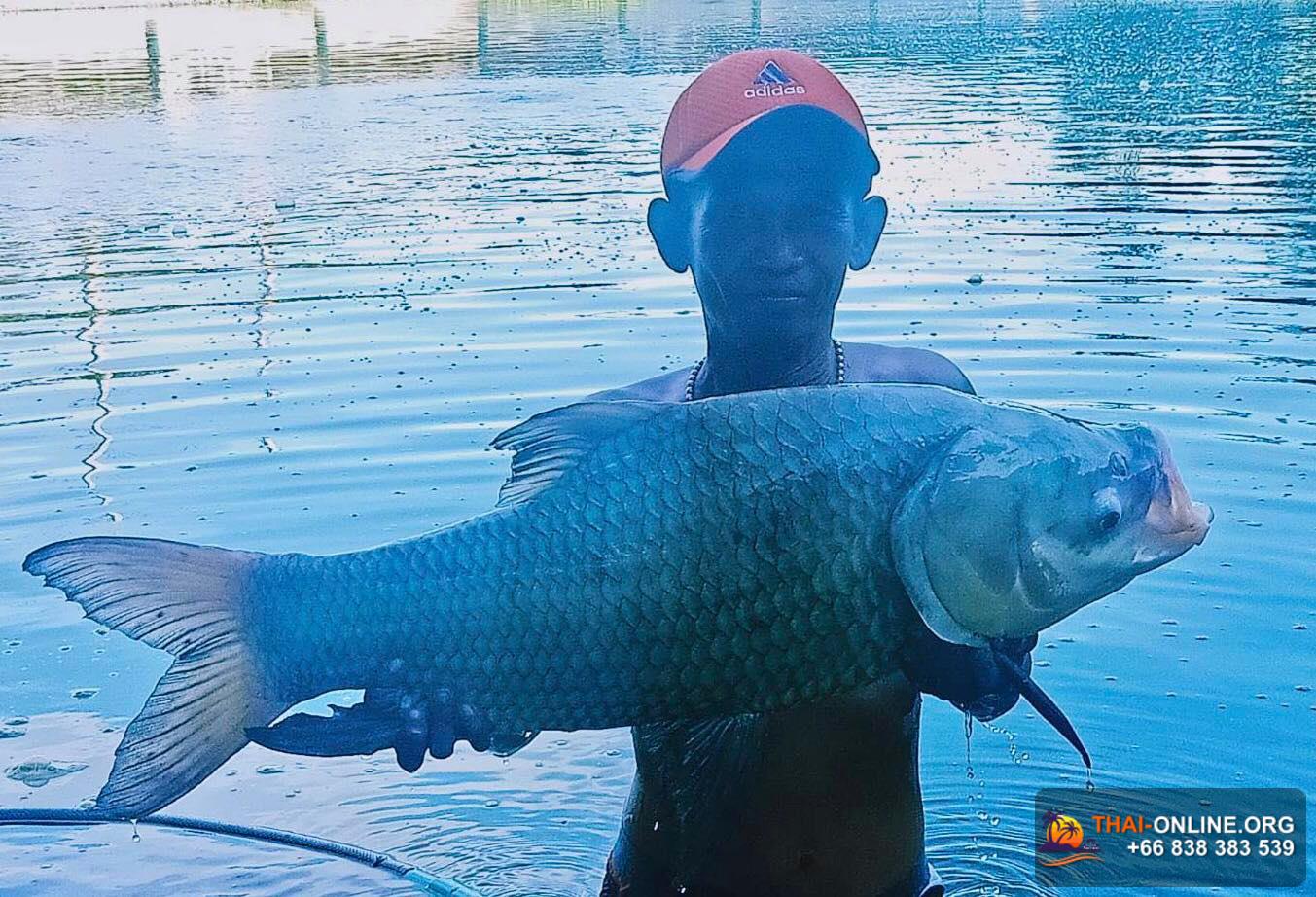 Рыбалка в паттайе на озере монстров